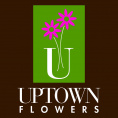 Uptown Flowers Weston Centre Black Card
